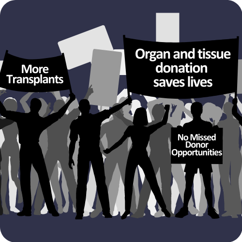 The Truth About Transplants